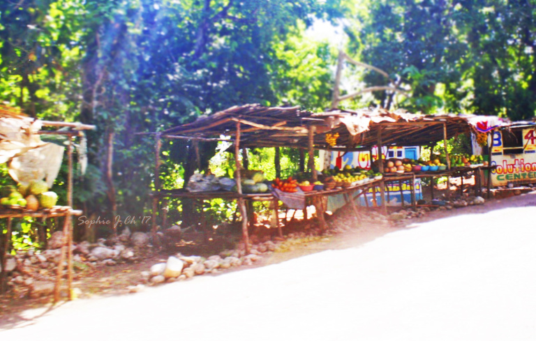 jacmel 3